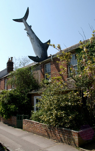creative commons hi-res photo of the day:  headington shark (1265 x 2000)