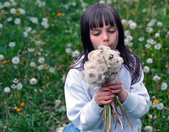 Dandelion Fields Forever (spinlab) Tags: green girl field childhood blowing dandelion seeds mississauga spinlabca kalyna