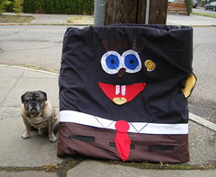 Pug With Black SpongeBob Squarepants (zoomar) Tags: seattle dog black dogs pug pugs roscoe spongebobsquarepants garagesale blackpower