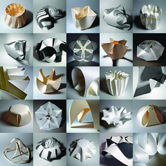 Morphogenesis (Richard Sweeney) Tags: sculpture art geometric nature paper paperart design flora origami fineart craft folded organic paperfolding folding papercraft naturalform papersculpture artsculpture paperstructure  richardsweeney
