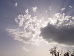 Cloudy sky (Giulygia) Tags: sky sun clouds nuvole cielo sole paleblue rami raggi celeste