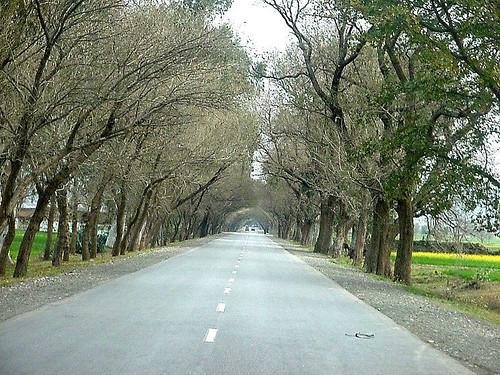 152965405 51fb964bca - Haripur-pakistan