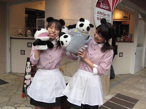 Traveling Babo and the Tokyo Panda Girls