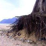 Lam puuk Beach thumbnail