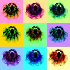 Something like Warhol(Venetian glass lamp shades)