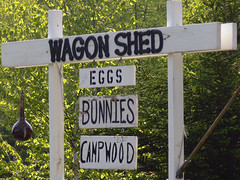 Honey, can you run down to the Wagon Shed? (Gienna Writes) Tags: deleteme5 deleteme8 deleteme deleteme2 deleteme3 deleteme4 bunnies deleteme6 deleteme9 deleteme7 sign print funny deleteme10 eggs campwood