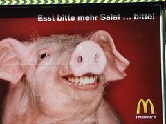 Eat more salad... please! (austrianpsycho) Tags: pig spaß humor mcdonalds billboard m advertisement werbung plakat schwein