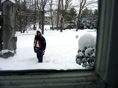 framed in white (mcmachete) Tags: trees white snow newyork cold window canon newjersey a95 2006 frame blizzard
