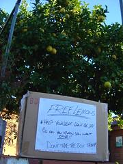 Free Lemons!