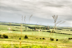 _MG_7316-18 (fleetingphotons) Tags: england castle 20d hill oxfordshire hdr whitehorse uffington tamron2875mmf28