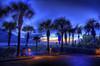 Palm Evening (worldwidewandering) Tags: ocean sunset usa sun beach water america d50 nikon rocks 500v20f florida deleteme10 indian united 2006 indianrocksbeach nikond50 states largo hdr photomatix interestingness484 i500 worldwidewandering
