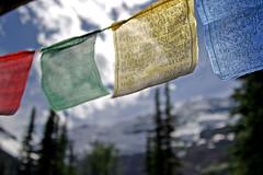 prayer flags (inklake) Tags: blue sky mountain canada colour ice nature topv111 topv333 bokeh alberta prayerflags lakelouise interestingness3 i500 inklake plainofthesixglaciers