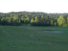 a3dcre2 (johnrichard001) Tags: family norway golf farm 2006 haga brum nordhaug