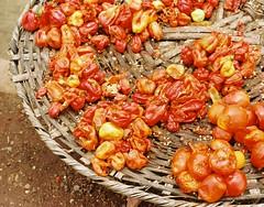 Peppas! (Barefoot In Florida) Tags: africa cooking state market nigeria peppers yoruba ogun abeokuta