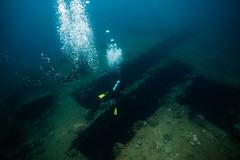 Cuts (Alex Tischenko) Tags: vanuatu underwater santo ss president coolidge tropical canon 5d mark ii 2 ikelite stobes natural light travel adventure scuba diving