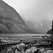 Logs and Moraine Lake (Black & White)