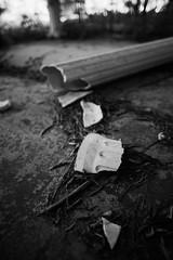 abandoned nursing home 11 (furrycelt) Tags: blackandwhite building abandoned broken monochrome leaves nc nikon decay sigma northcarolina fallen column fuquayvarina urbex 2015 d600 sigma24mmf18 lensblr photographersontumblr jianwilson sigma24mmf18exdgdfmacro nccentersformatureadultsinc