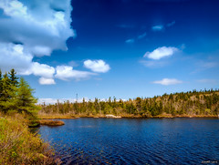 Moody Lake (kenmojr) Tags: trees sky lake canada nature water clouds forest landscape spring woods novascotia cloudy outdoor may atlantic foliage halifax maritimes harrietsfield maritimeprovinces atlanticprovinces kenmorris kenmo moodylake