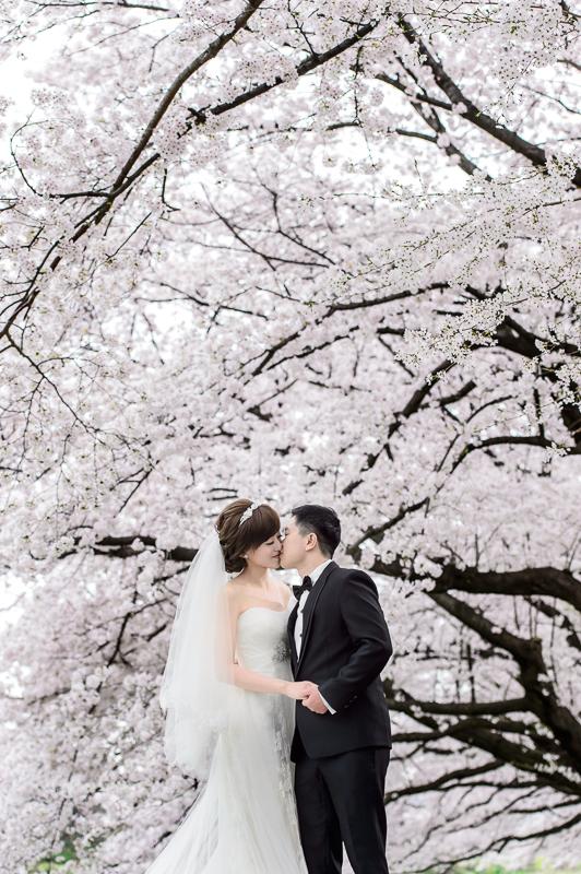 日本婚紗,京都婚紗,櫻花婚紗,新祕藝紋,cheri wedding,旋轉木馬手工婚紗,婚攝,cheri婚紗包套,海外婚紗,DSC_0008
