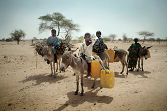 Niger Water and Sanitation Projects