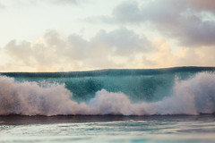 Crashing Wave (coastalcreature) Tags: ocean hawaii surf wave northshore tropical crashingwave impactzone