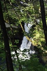 TORRENTE ENNA.. (lupus alberto) Tags: acqua orobie bosco cascata torrente vegetazione valbrembana valtaleggio