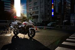 130203_5J9A9955.jpg (t_minatsuki) Tags: 歩行者天国 風景 秋葉原 中央通り