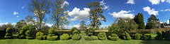 Topiary Panorama, Chastleton House, Oxfordshire (Geraldine Curtis) Tags: green nationaltrust oxfordshire chastletonhouse circulargarden