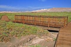 Salt Creek (1) (AntyDiluvian) Tags: california bridge southwest nationalpark drycreek desert valley deathvalley saltcreek naturetrail pupfish mohavedesert