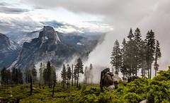 Nikon D810 Fine Art Landscape Photos: Ansel Adams & John Muir Country-- Eastern and Western Yosemite! Dr. Elliot McGucken Fine Art Nature Photography! (45SURF Hero's Odyssey Mythology Landscapes & Godde) Tags: nature fineart wideangle el yosemite dome half johnmuir anseladams fineartphotography capitan naturephotography wideanglelens naturephotos d810 fineartphotos 45surf fineartphotographer elliotmcguckenfineartphotography elliotmcguckenfineart 45surffineart landscapenikond810fineartlandscapephotosjohnmuircountryeasternandwesternyosemitedrelliotmcguckenfineartnaturephotographyanseladamsnikond810 masterfineartphotography elliotmcgucenphotography