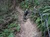P1050448 (wataru.takei) Tags: mtb lumixg20f17 mountainbike trailride miurapeninsulamountainbikeproject