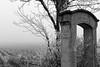 Clos des Ormes (Fréd.C) Tags: vignes bourgogne gelee hiver winter ormes france burgundy morey clos french black white noiretblanc bw