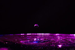 falling down (juergumbricht) Tags: canon 6d eos fullframe vollformat 50mm f14 water drops blue pink purple tropfem wasser schweiz aargau baden