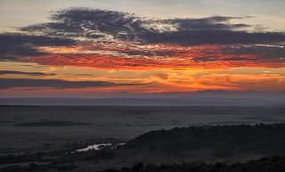 Mara Dawn