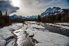 Nakiska Ribbon Creek (Tony_Brasier) Tags: water walking nikond7200 canada cold winter january bridge skiresort alberta mountains bluesky nikon location lovely trees fir christmastrees icecold ice creek mud canada usa stones sun nimbostratus cumulonimbus clouds valley 16mm land d7200 16mm80mm shootraw raw