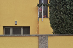 Binsfeld (Manfred Hofmann) Tags: analog brd farbig garten kurpfalz orte projekte stadtundland surreal themen flickr öffentlich speyer pfalz
