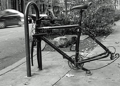 end of the road (mitchell haindfield) Tags: seattle washington wa sea theft vandalism sidewalk public downtown urban crime bike bicycle locked lock stripped parts missing disabled raleigh lemond street stolen property personalproperty larceny