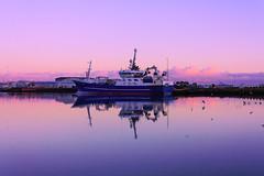 Nautical Reflections (joshuadavidreid) Tags: reflection water harbour birds clouds sky pink boat fishing