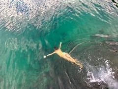 Dive into the blue below (Deb Jones1) Tags: byronshire nsw brunswickheads swim people fromabove beauty swimming diving sea water ocean