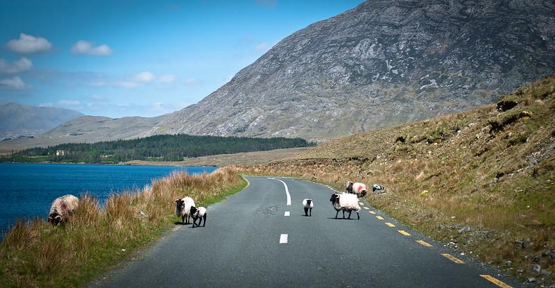 Irlandia, Connemara..