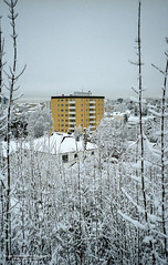 Yellow apartment block in snow