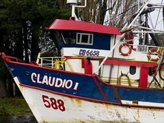 """Claudio I"" (Calvipitecus) Tags: chile barco valdivia embarcacin rovaldivia canonpowershotg15 calvipitecus"