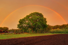 Silver Lining (Elliotphotos) Tags: trees cloud storm tree grass rain weather clouds fence ma rainbow alone farmers farm massachusetts farming newengland fences rainy farms farmer rainbows bigtree elliot concord storms pinksky ferme bigtrees lonetree stormyweather concordma concordmassachusetts newenglandweather fermes lonetrees gilfix elliotphotos elliotgilfix