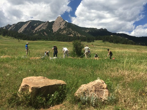 Photo - Volunteer trail building project at Chautauqua