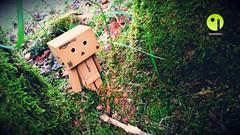 Danbo - Jardin secret (Danboard Belgium) Tags: japan garden toy actionfigure figurine arttoy yotsuba danbo toyart revoltech danboard gardenlovers