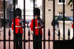The Queen's Guard (atl10trader) Tags: london army drums major drum outdoor military guard queen bands changing corps marching british guards drummers stjames coldstream detachment grenadier bandsmen