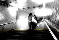 1 STAIRS (bill sweeney4) Tags: nyc newyork car station train underground subway moving still waiting platform commute mta newyorksubway jan2015