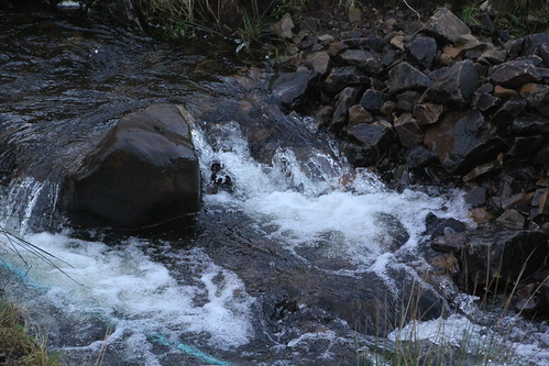 Highland Stream, Scotland.