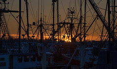 ...silhouette sunrise... (jamesmerecki) Tags: sunrise early morning firstlight newbedford ma massachusetts silhouette vessels boats ships masts lines scallop fishingindustry wharf pier
