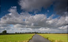 Meadows. (Alex-de-Haas) Tags: dutch holland hollandseluchten nederland netherlands noordholland zaanseschans clouds gras grass grasslands landscape landschap meadow meadows oerhollands skies sky summer sunny weiland weilanden wolken zomer zonnig